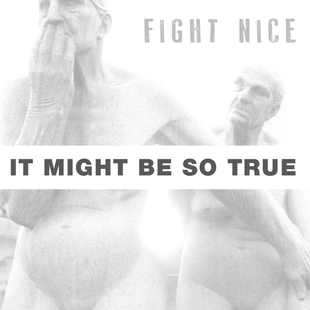 Fight Nice: It Might Be So True artwork